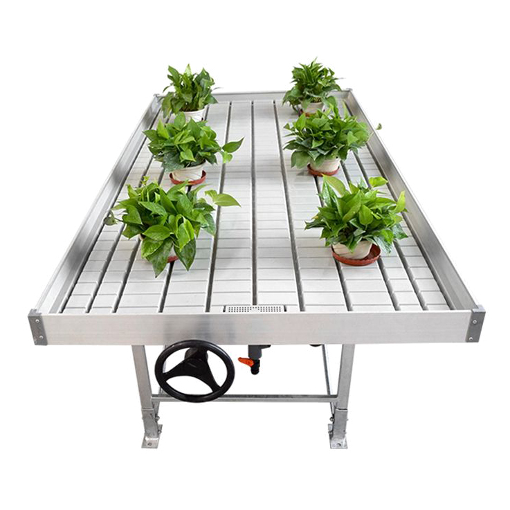 ebb and flow greenhouse seedling rolling flood table copy