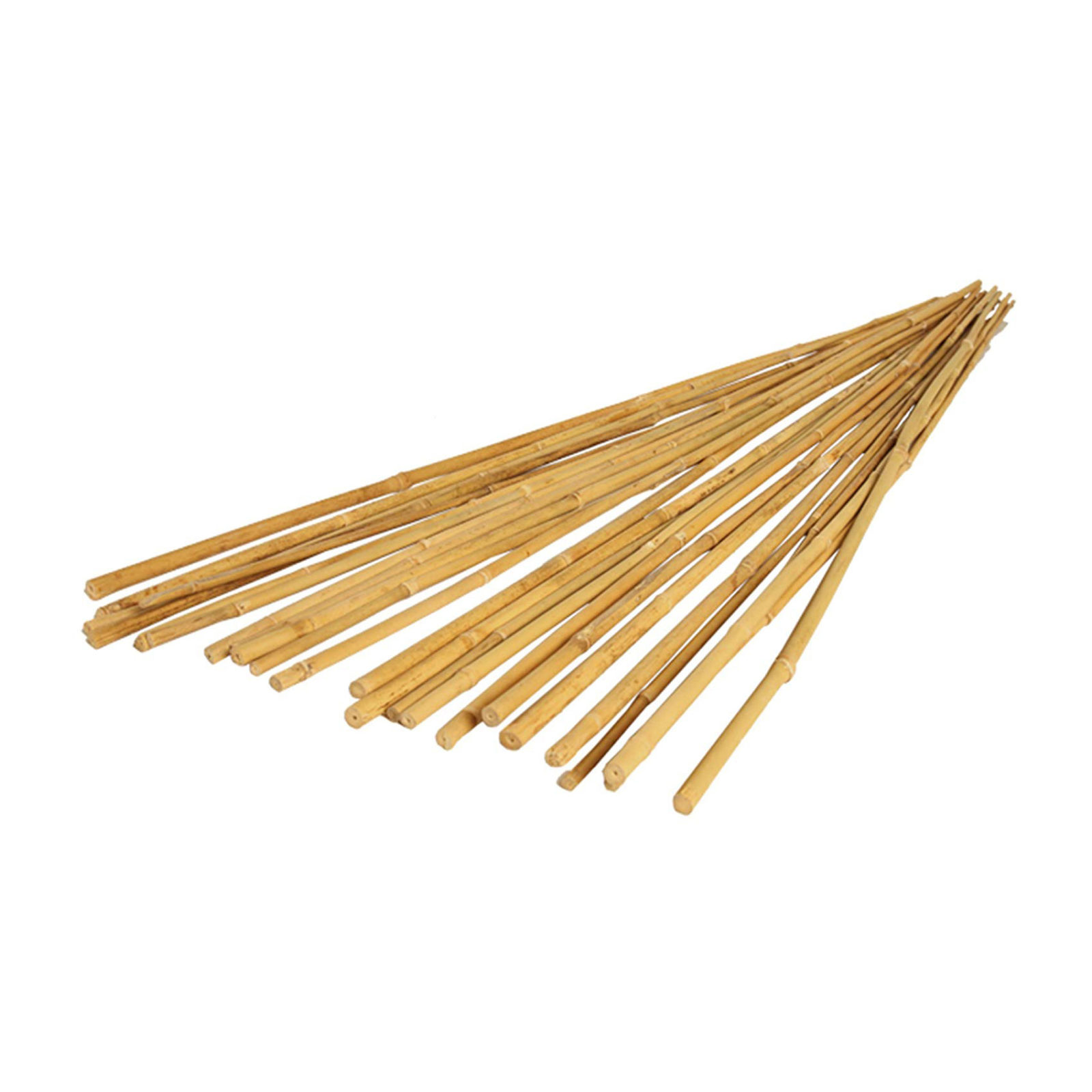 bamboo stakes resized 1